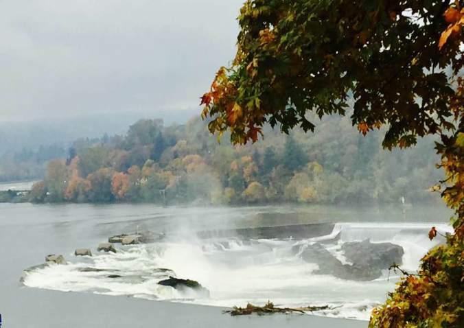 the falls - Linda