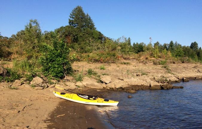 kayak blackberries